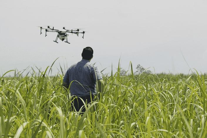 hectare - medição de terra com drone