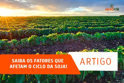 Saiba os fatores que afetam o ciclo da soja!