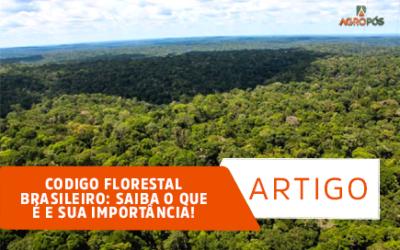 Código Florestal Brasileiro: Saiba o que é e sua importância!