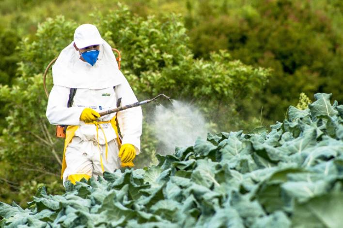 Riscos dos pesticidas