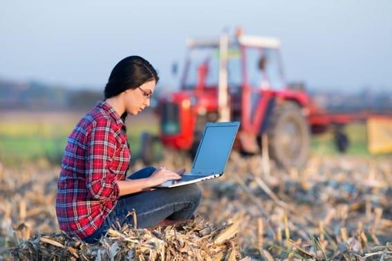 Custo De Produção Agrícola
