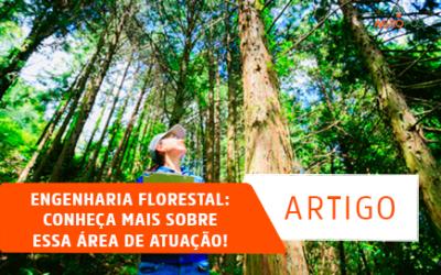 Engenharia florestal: conheça mais sobre essa área de atuação!