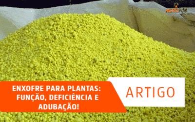 Enxofre para plantas: função, deficiência e adubação!