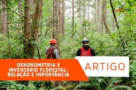Dendrometria e inventário florestal: relação e importância!