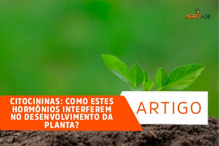 Citocininas: Como estes hormônios interferem no desenvolvimento da planta?